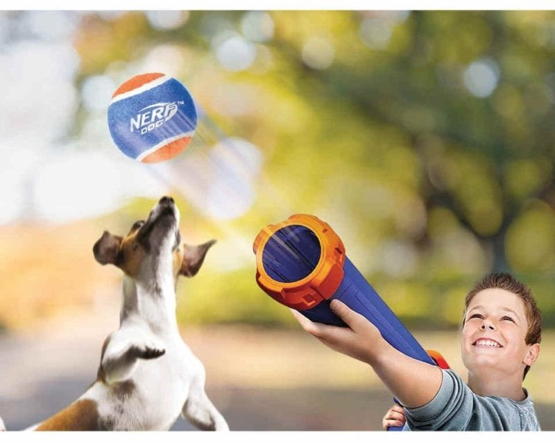 Aldi is selling a Nerf tennis ball launcher for your dog, The Manc