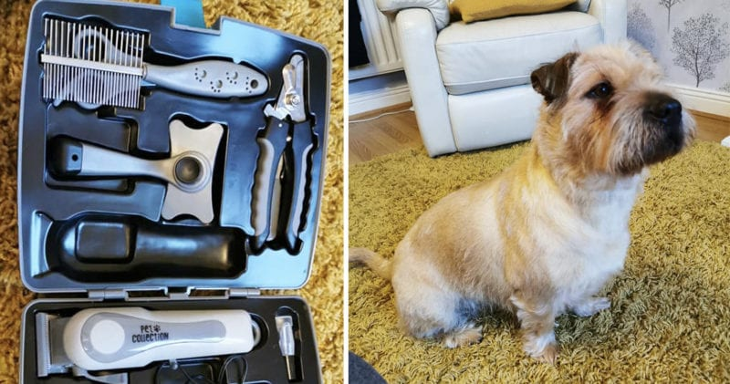 Cordless pet grooming kit spotted in Aldi for just £20, The Manc