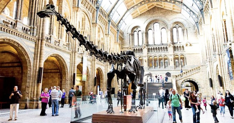 World famous Dippy the Dinosaur is coming to Greater Manchester next week, The Manc