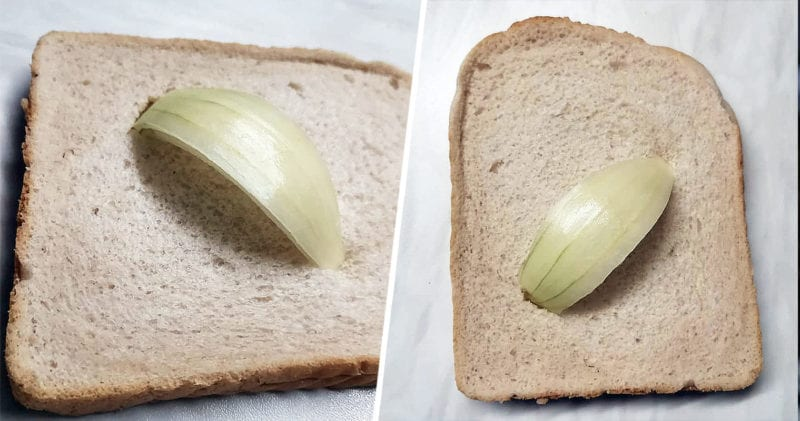 Someone from Preston is selling a slice of onion stuck in bread for £365,000, The Manc