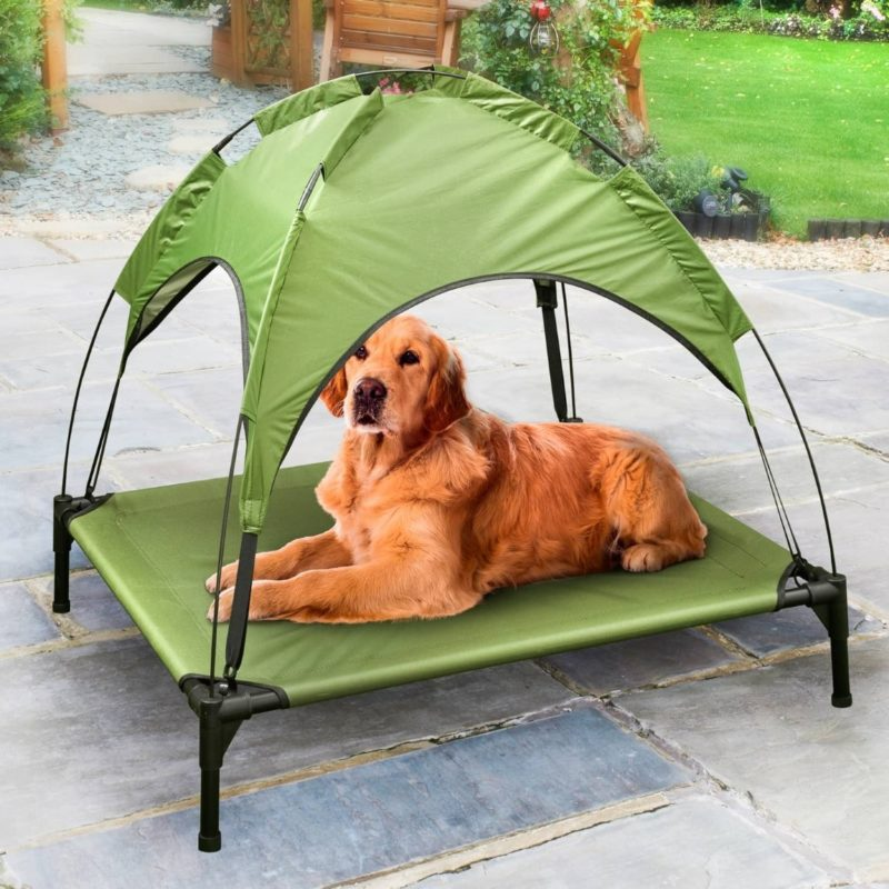 You can now get a sun lounger just for your dog, The Manc