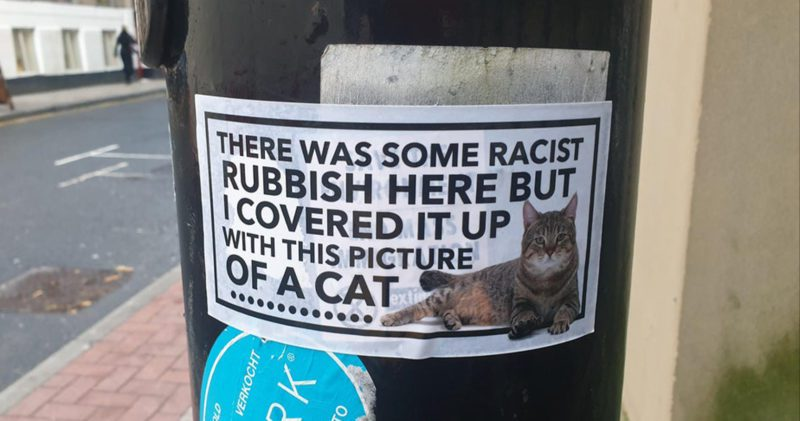 Someone is using cat stickers to cover racism in Manchester, The Manc
