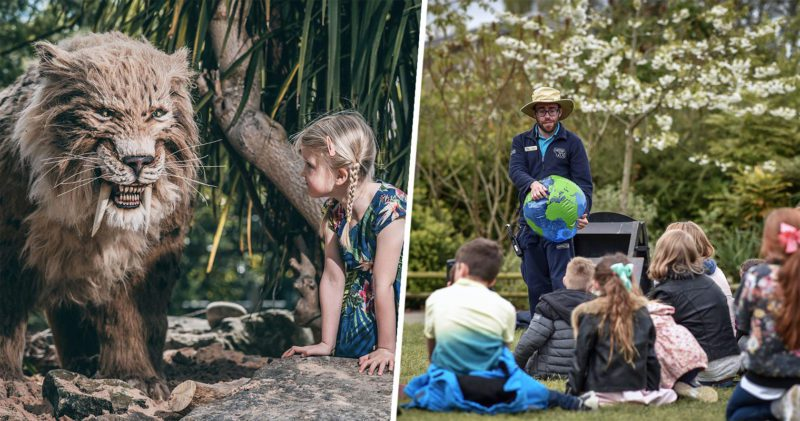 Chester Zoo releases loads of fun activities for kids to do during lockdown, The Manc