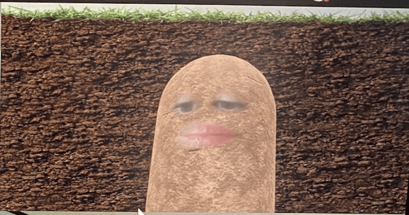 Boss accidentally turns herself into a potato for an entire video meeting, The Manc