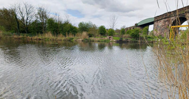 A man has died trying to rescue his dog from a river in Cheshire, The Manc