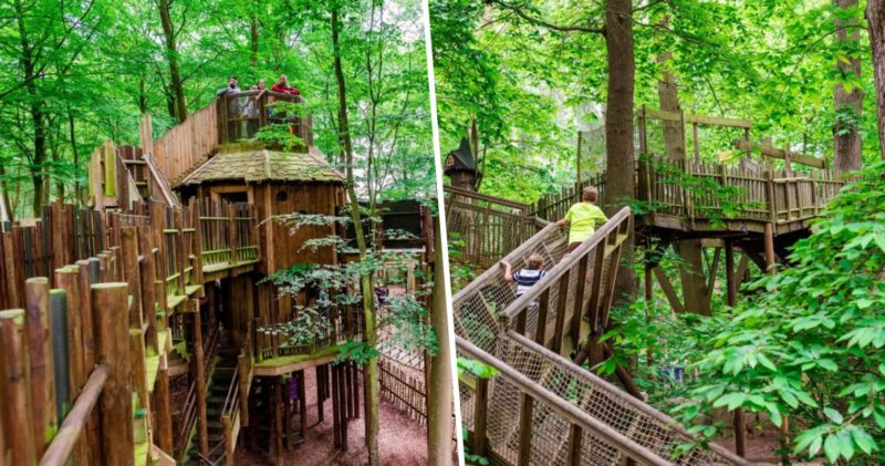 There's a new £5 million woodland theme park opening in Cheshire, The Manc