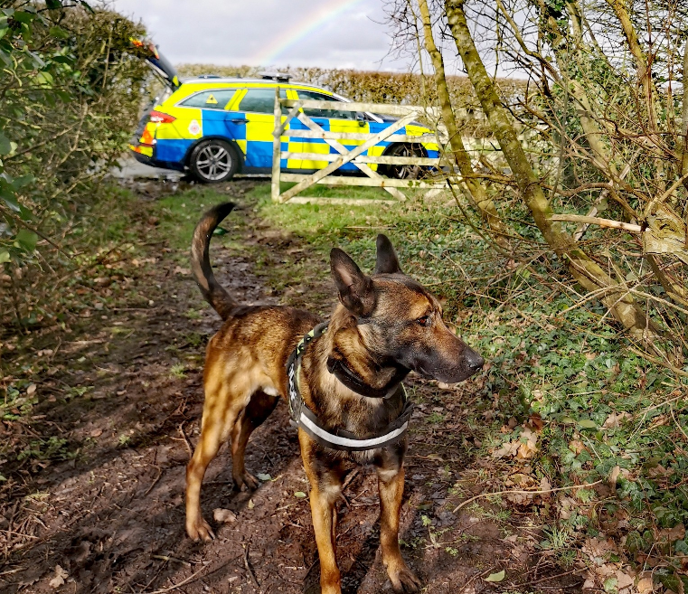 Police dog catches burglar taking advantage of empty post office, The Manc