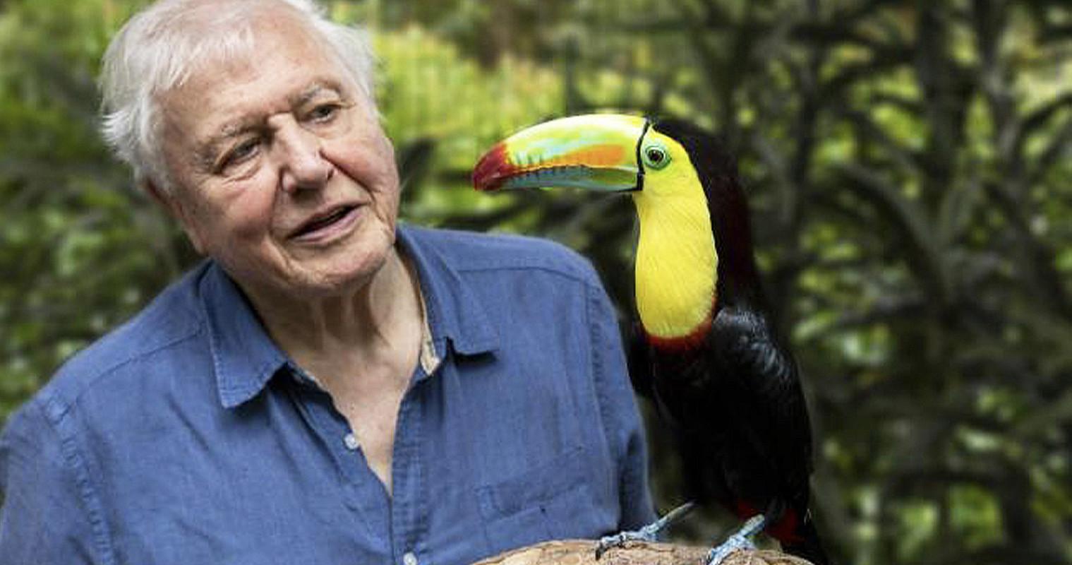 Sir David Attenborough is teaching Geography lessons on BBC Bitesize this week, The Manc