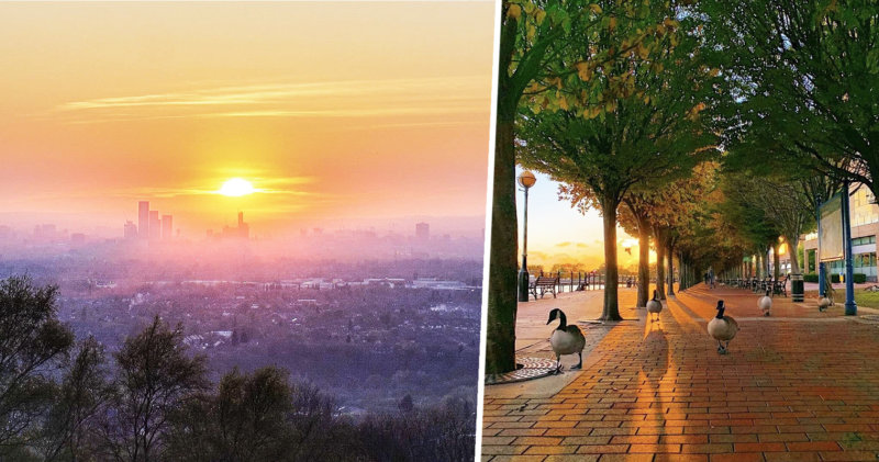 How nature has reclaimed Manchester during the coronavirus pandemic, The Manc