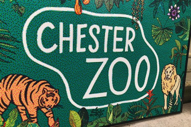 Chester Zoo confirms it will reopen to public on June 15, The Manc