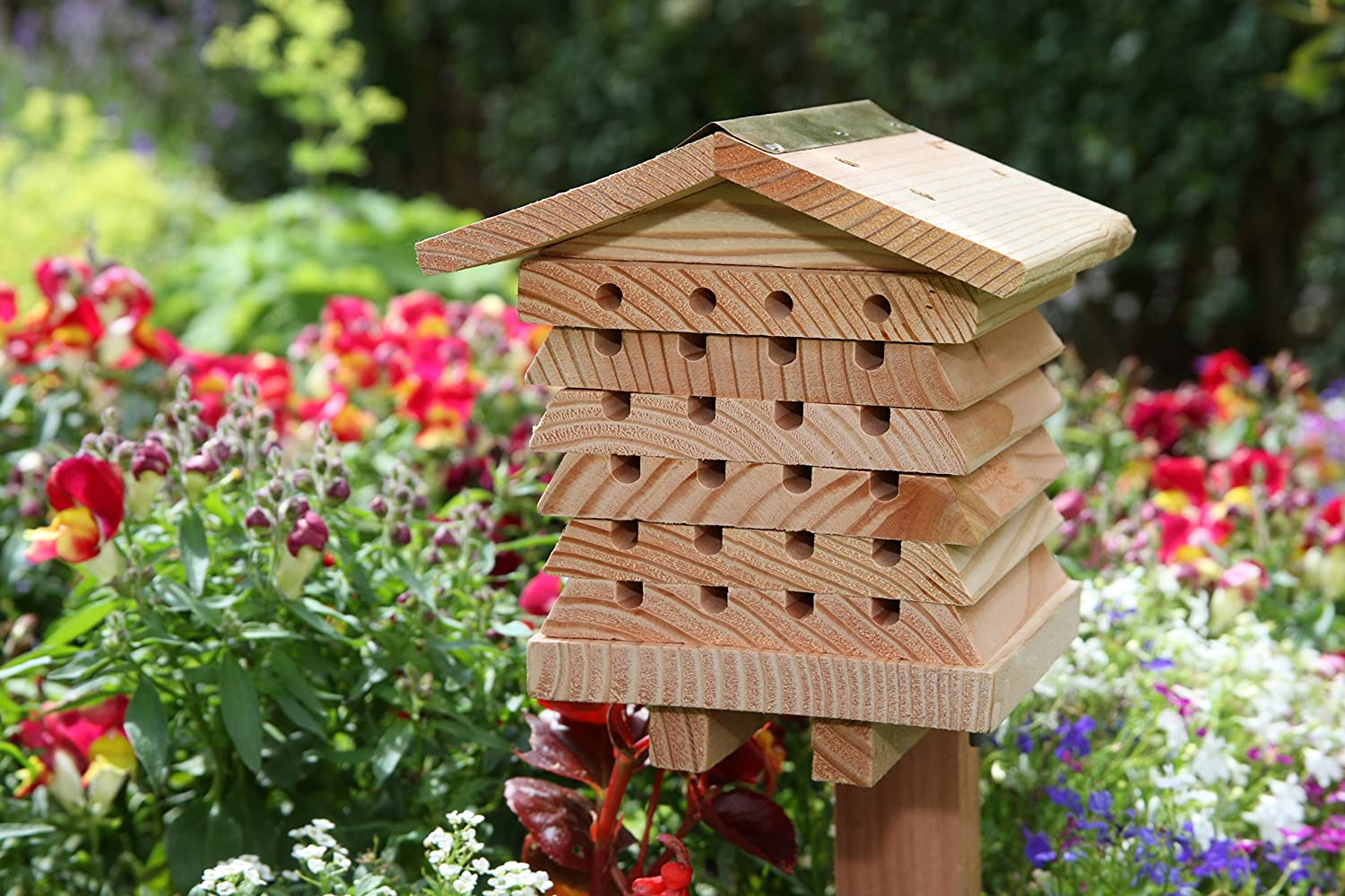 Amazon is selling a beehive that helps encourage bees to gardens in Summer, The Manc