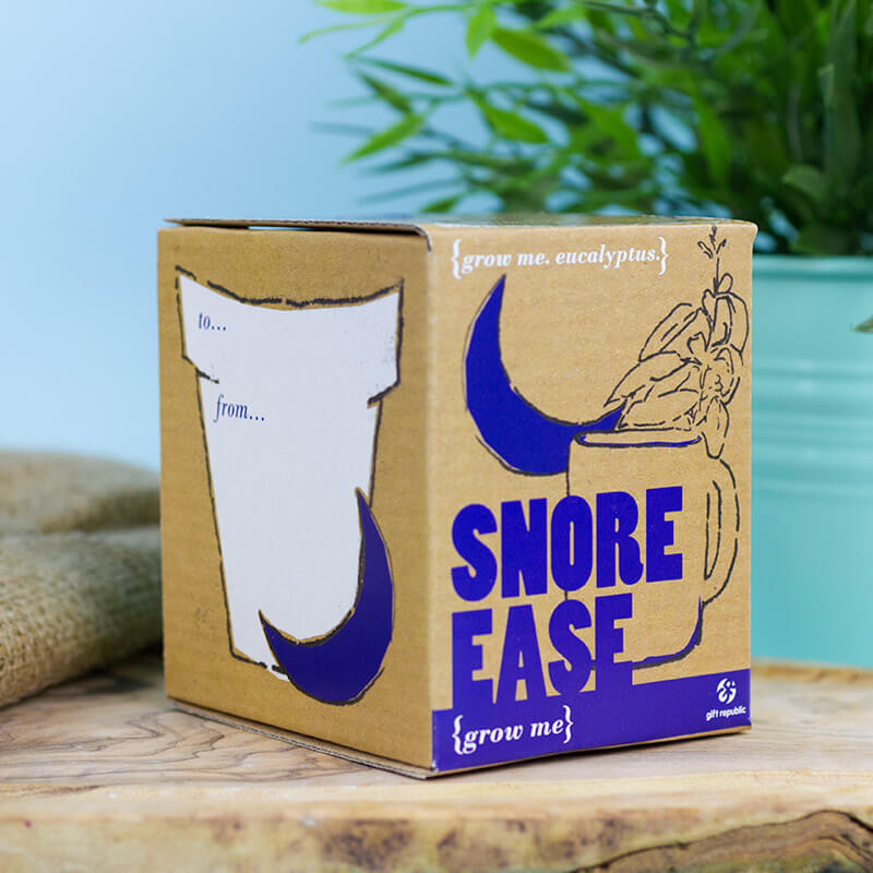 This grow-your-own eucalyptus plant kit could help prevent snoring, The Manc
