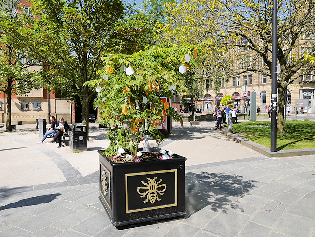 Manchester has been crowned as Britain's 'Greenest City', The Manc
