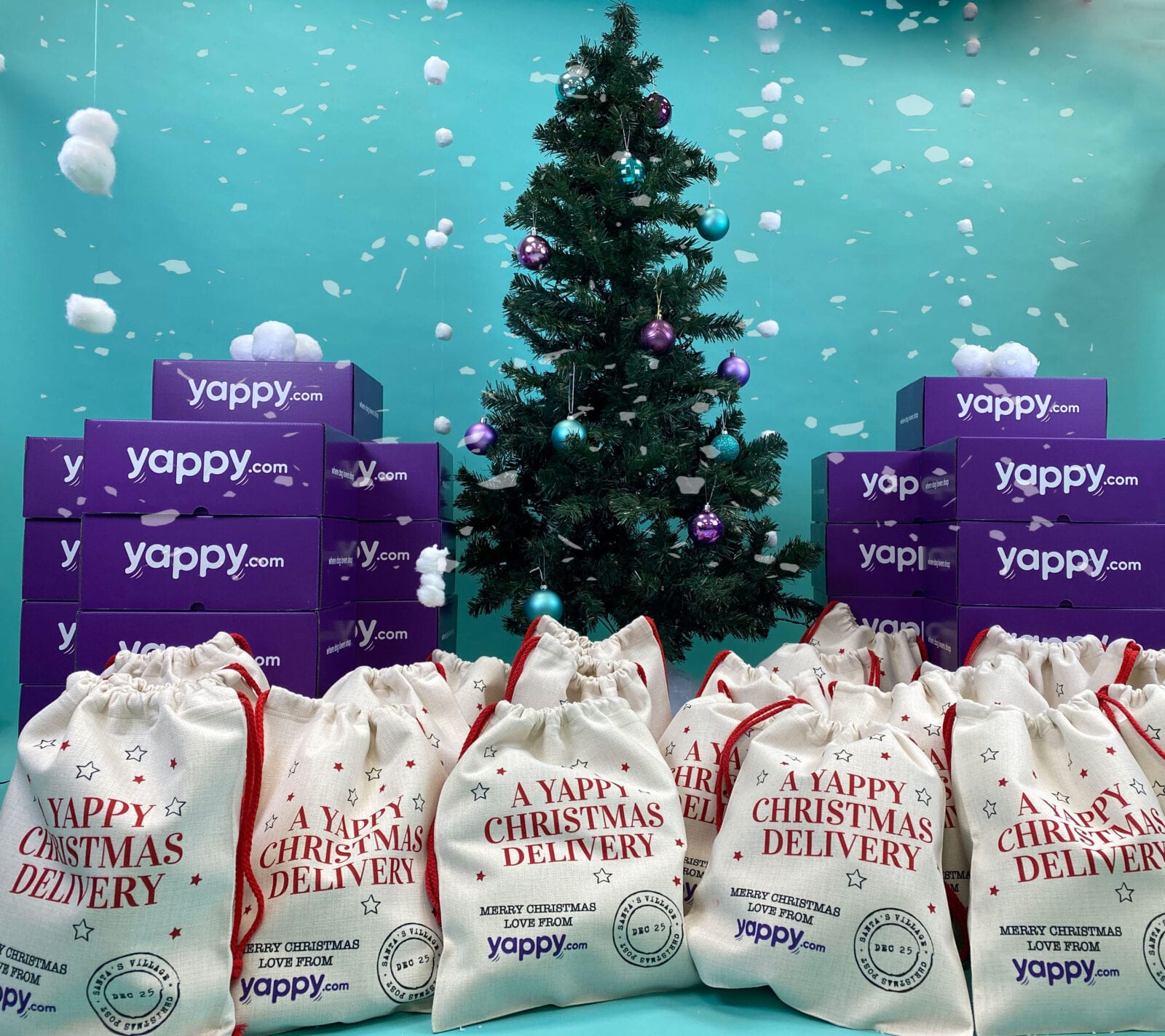 This pet gifting business is on a mission to give Manchester's rescue dogs a 'yappy Christmas', The Manc