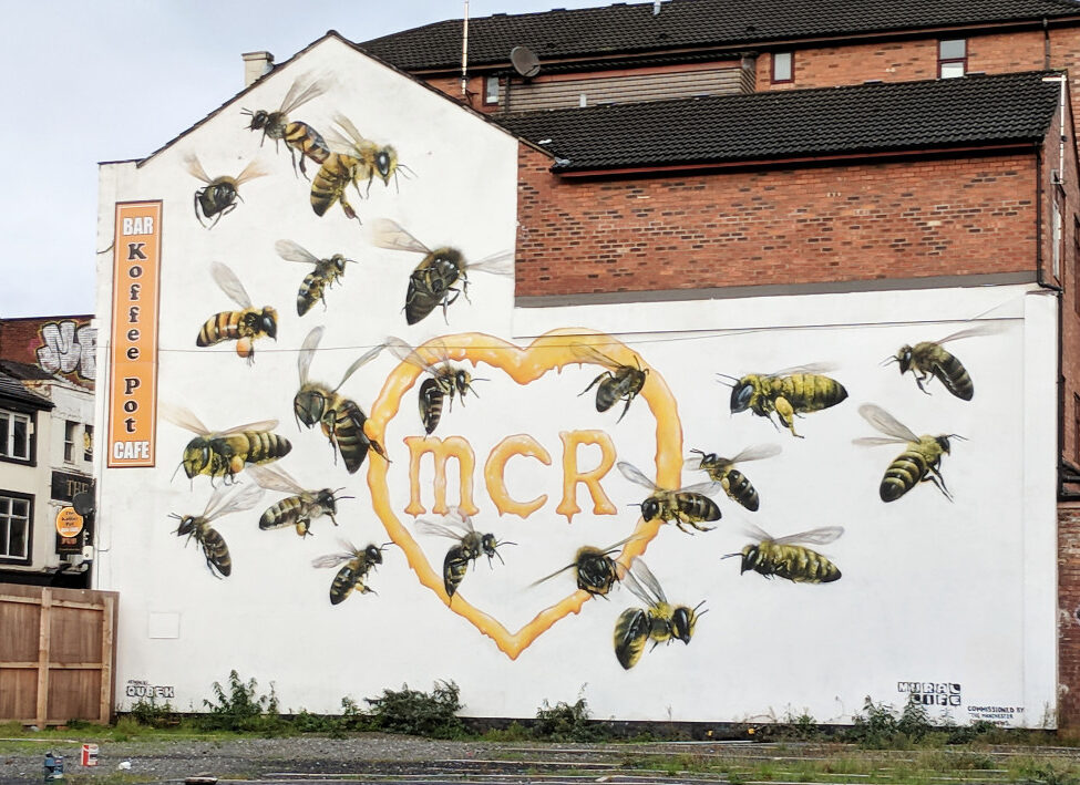 What does the word 'Manchester' actually mean?, The Manc