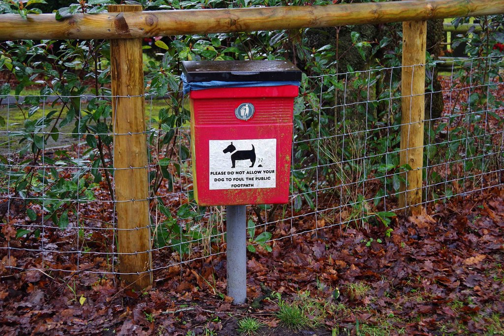 The number of dog poo littering acts has risen by 200% since lockdown, The Manc