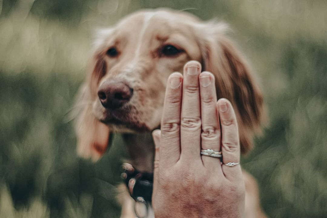 This Trafford-based company is creating jewellery from your pet's pawprints, The Manc