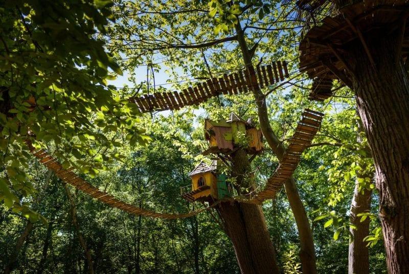 First look inside Cheshire's new woodland adventure park BeWILDerwood, The Manc