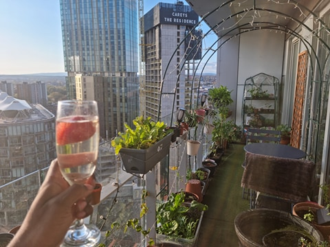 The Cloud Gardener: How one man's sky-high horticulture is turning heads across the world, The Manc