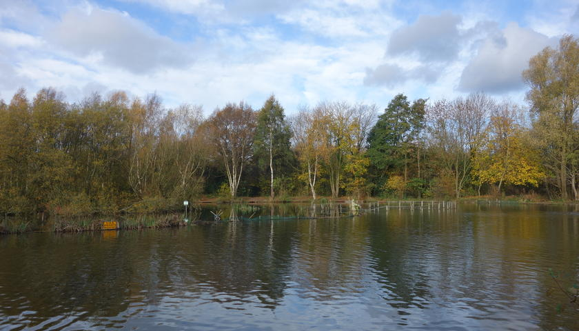 Popular country park in Greater Manchester to get massive £100,000 revamp, The Manc