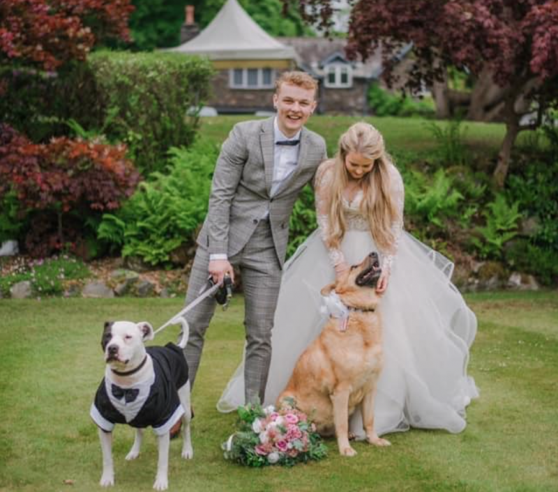 Dogs 4 Rescue share heartwarming story of two former residents' starring role in wedding, The Manc