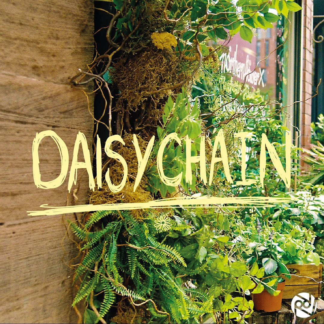 'Daisy Chain' single artwork - the title is placed on top of a picture of plants growing up a wall.