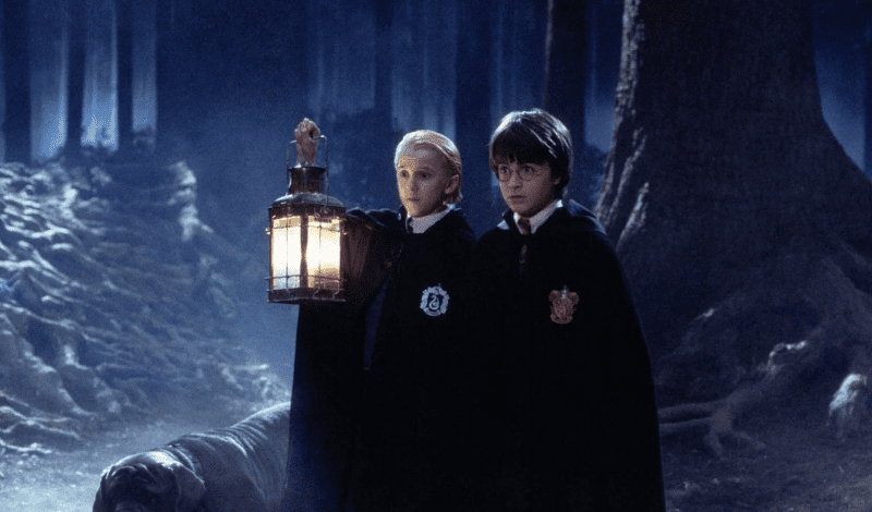 A Harry Potter 'forbidden forest' experience is coming to Cheshire this autumn, The Manc