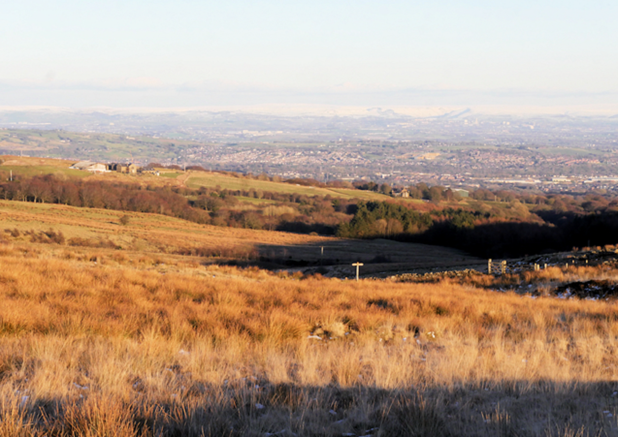 Woodland Trust pleads with public not to light fires on moors this summer, The Manc