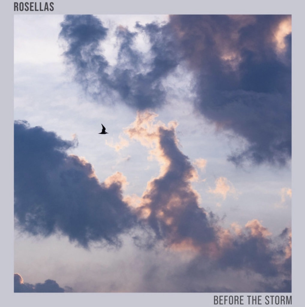 Rosellas' single artwork shows clouds with a pink lining with the silhouette of a bird flying past.