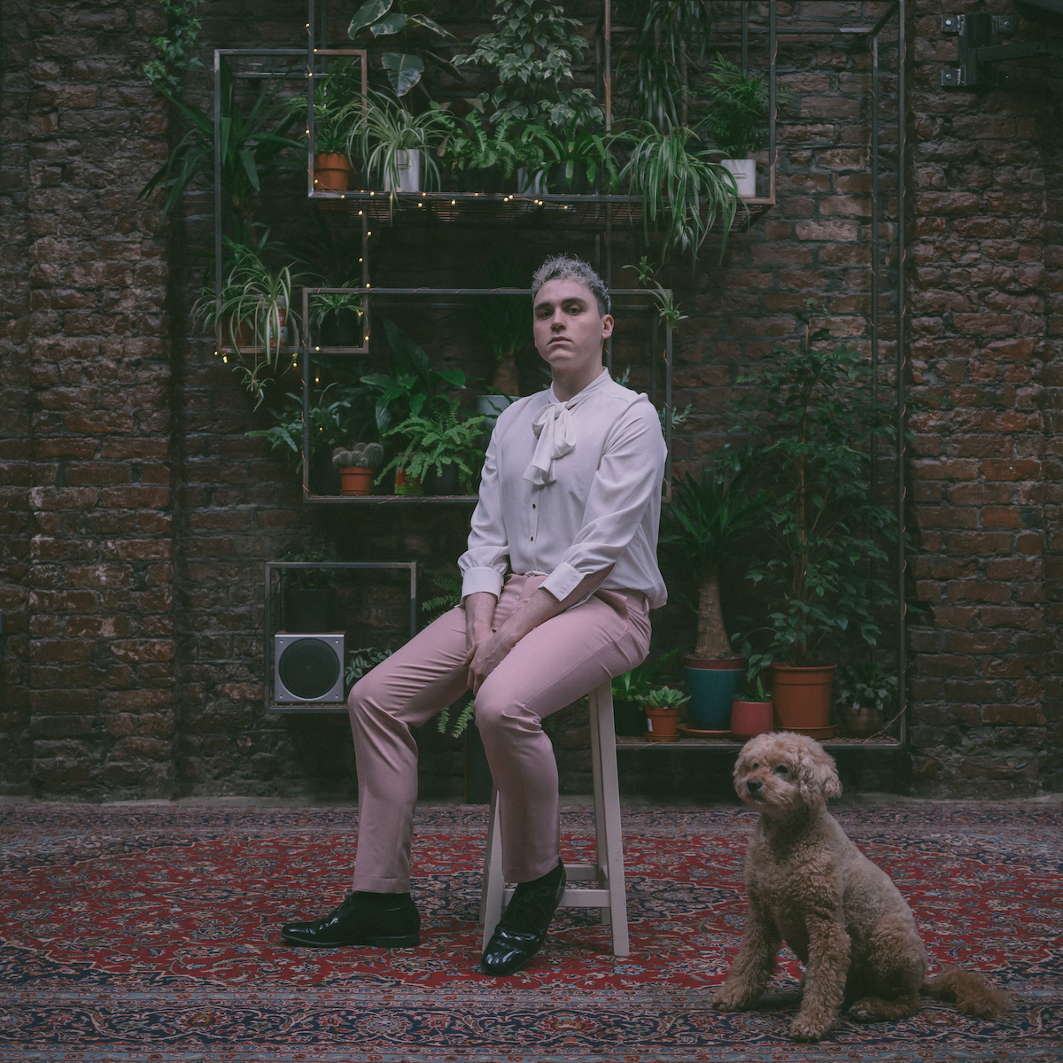 Patrick sits on a white stool, wearing pink trousers and white shirt. A dog sits along side him to his left. Plants sit on shelves on a wall behind them.