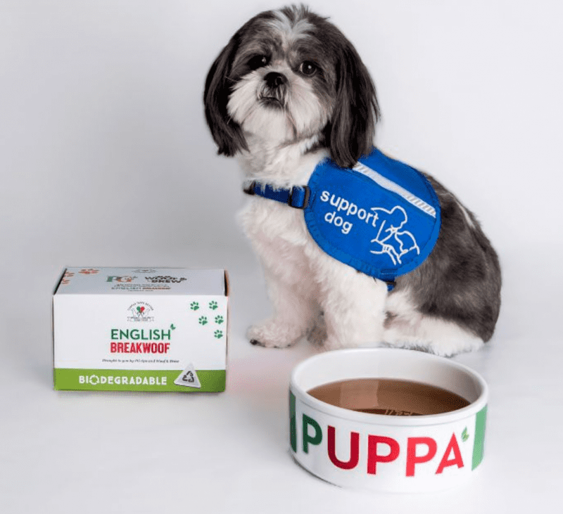 PG Tips launches new 'English Breakwoof' tea just for dogs, The Manc