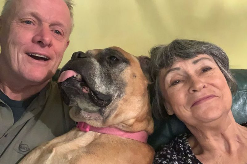 This retired northern couple have fostered a dog who only has months to live, The Manc