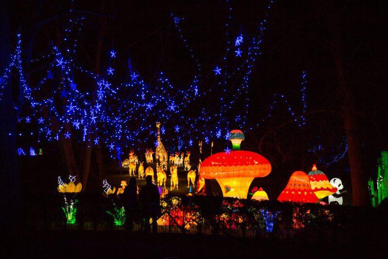 Lightopia returns to Heaton Park this Christmas with new festive 'fantasy' installations, The Manc