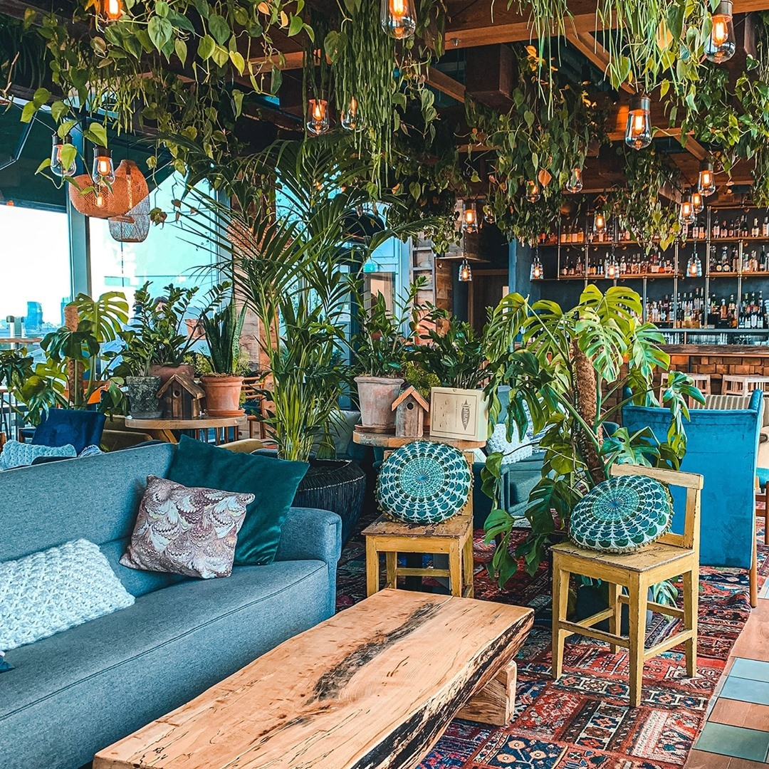An iconic Manchester hotel is being turned into a TREEHOUSE hotel, The Manc