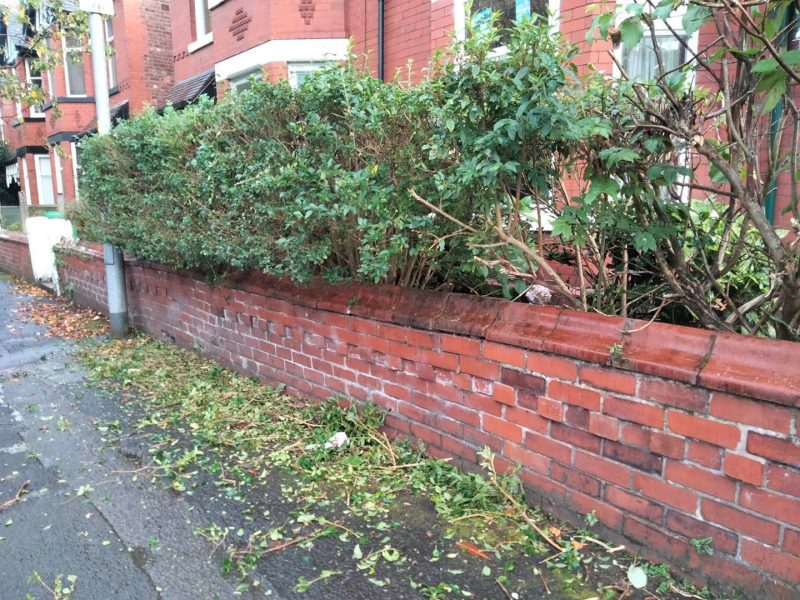 Who is Chorlton's 'mystery bush trimmer' that only operates at night?, The Manc
