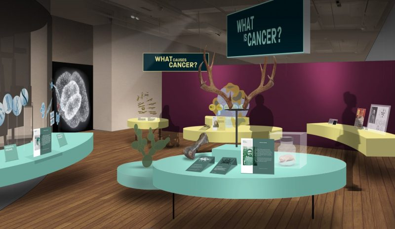 New exhibition about how cancer is 'prevented, detected and treated' is opening at the Science and Industry Museum, The Manc